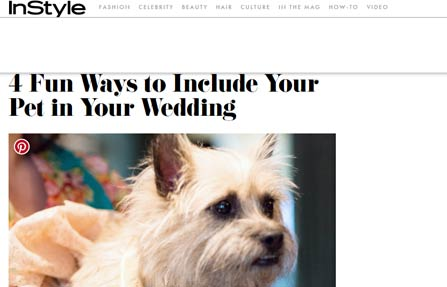 InStyle Pets
